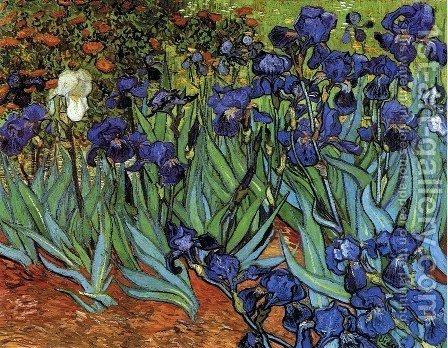 Vincent Van Gogh: Irises - reproduction oil painting