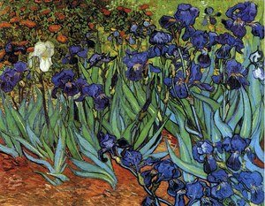Reproduction oil paintings - Vincent Van Gogh - Irises