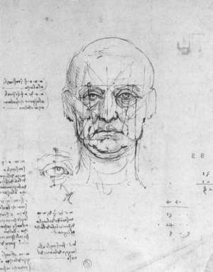 Reproduction oil paintings - Leonardo Da Vinci - Study On The Proportions Of Head And Eyes