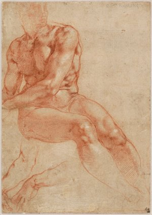 Reproduction oil paintings - Michelangelo - Male Nude Study