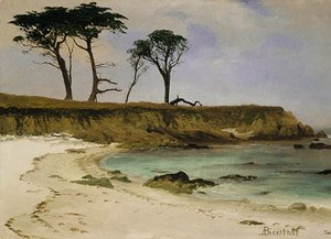 Reproduction oil paintings - Albert Bierstadt - Sea Cove