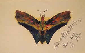 Reproduction oil paintings - Albert Bierstadt - Butterfly (second Version)