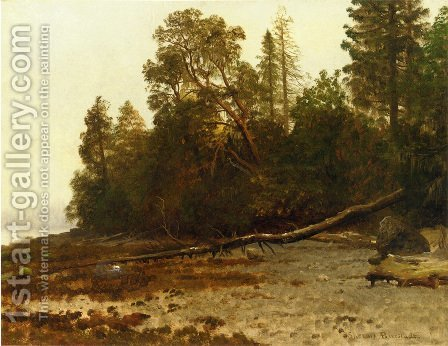 The Fallen Tree by Albert Bierstadt - Reproduction Oil Painting