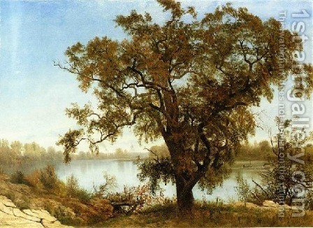 View From Sacramento by Albert Bierstadt - Reproduction Oil Painting