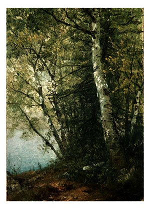 Reproduction oil paintings - John Frederick Kensett - Study Of Beeches
