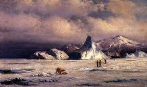 Reproduction oil paintings - William Bradford - Arctic Invaders