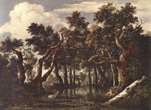 Reproduction oil paintings - Jacob Van Ruisdael - The Marsh in a Forest c. 1665