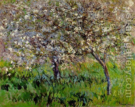 Apple Trees In Bloom At Giverny by Claude Oscar Monet - Reproduction Oil Painting