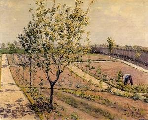 Reproduction oil paintings - Gustave Caillebotte - Kitchen Garden  Petit Gennevilliers