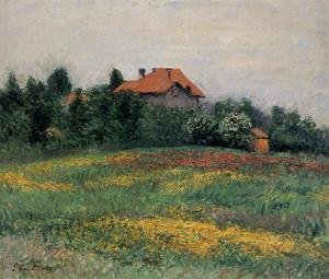 Reproduction oil paintings - Gustave Caillebotte - Norman Landscape
