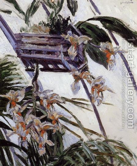 Orchids by Gustave Caillebotte - Reproduction Oil Painting