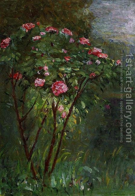 Rose Bush In Flower by Gustave Caillebotte - Reproduction Oil Painting
