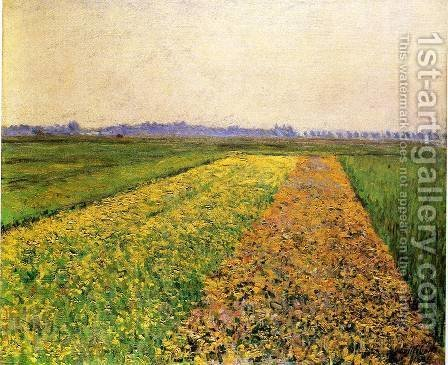 The Yellow Fields At Gennevilliers by Gustave Caillebotte - Reproduction Oil Painting