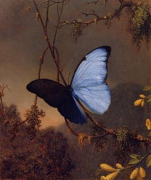 Famous paintings of Butterflies: Blue Morpho Butterfly