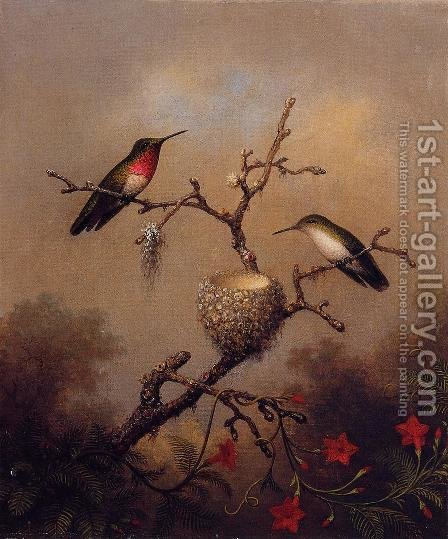 Ruby Throated Hummingbird by Martin Johnson Heade - Reproduction Oil Painting