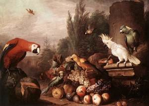 Famous paintings of Parrots: Still-life with Birds 1710s