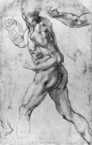 Reproduction oil paintings - Michelangelo - Male Nude 1505