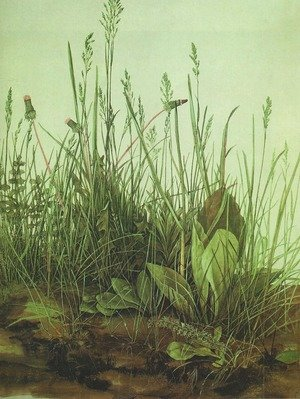Reproduction oil paintings - Albrecht Durer - Great Piece of Turf
