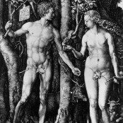 Oil painting reproductions - Renaissance - Northern - Albrecht Durer: Adam and Eve (The Fall of Man)