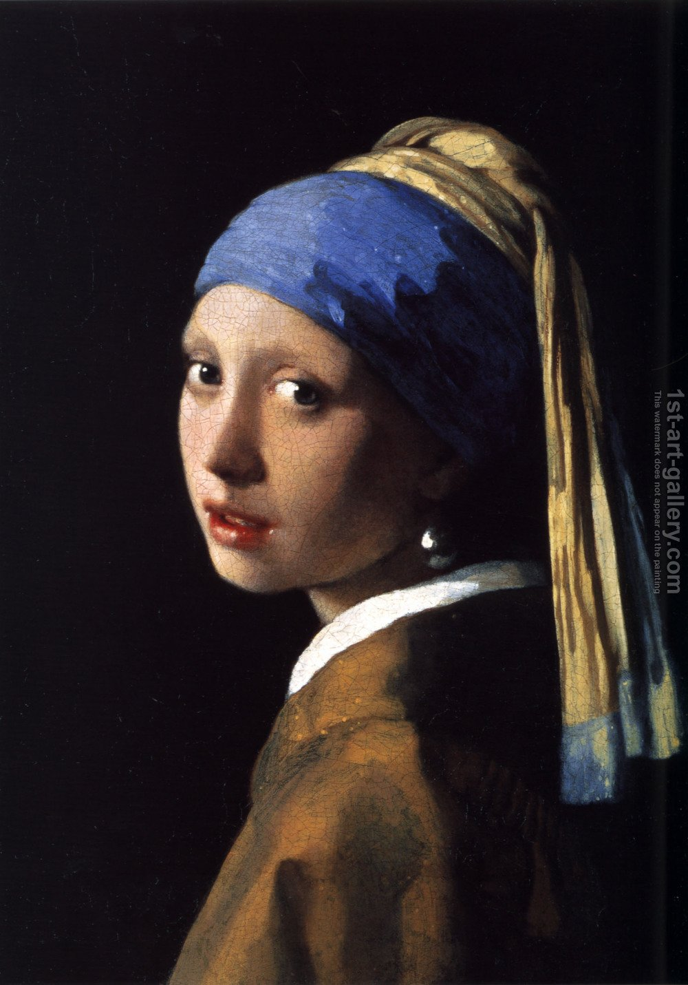 Famous paintings of portraits girl with a pearl earring c 1665