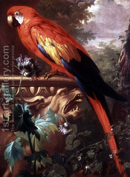 Scarlet Macaw in a Landscape by Jakab Bogdany - Reproduction Oil Painting