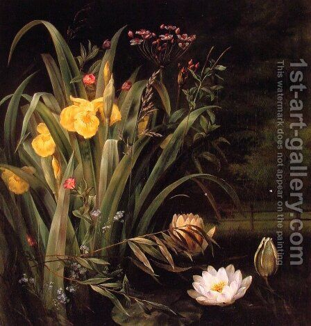 A Lily Pond by Hermania Sigvardine Neergaard - Reproduction Oil Painting