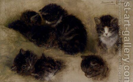 Studies Of Kittens by Henriette Ronner-Knip - Reproduction Oil Painting