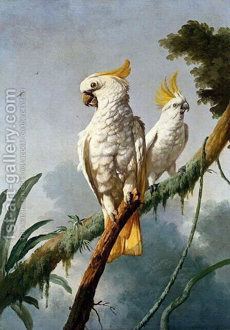 A Pair Of Sulphur-Crested Cocktoos by Jacques Barraband - Reproduction Oil Painting
