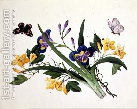 Blue Iris and Insects by Anonymous Artist - Reproduction Oil Painting