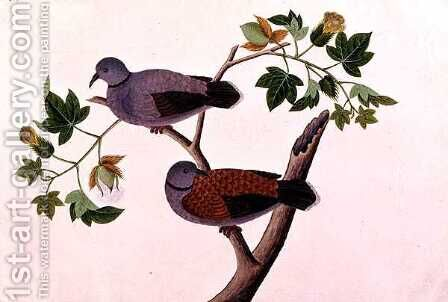 Birds in a tree, from 'Drawings of Birds from Malacca', c.1805-18 by Anonymous Artist - Reproduction Oil Painting