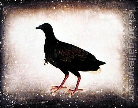 Bird, from 'Drawings of Birds from Malacca', c.1805-18 by Anonymous Artist - Reproduction Oil Painting