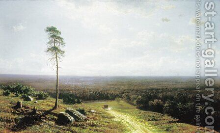 Forest view in midday, 1878 by Clodt von Jurgensburg Mikhail Konstantinovitch - Reproduction Oil Painting