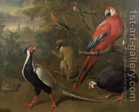 Pheasant, Macaw, Monkey, Parrots and Tortoise by Charles Collins - Reproduction Oil Painting