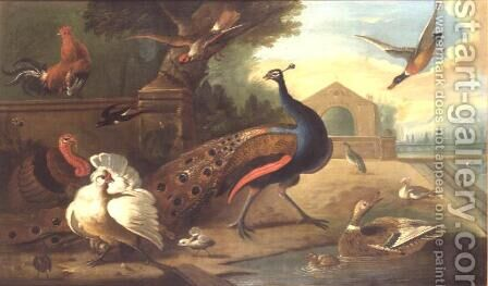 A Peacock, cockerel, turkey and other birds by Marmaduke Craddock - Reproduction Oil Painting