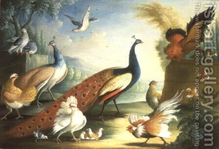 Two Peacocks Doves  Chickens and a Rooster in a Parkland by Marmaduke Craddock - Reproduction Oil Painting