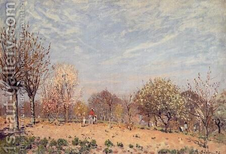 Apple Trees in Flower, Spring Morning by Alfred Sisley - Reproduction Oil Painting