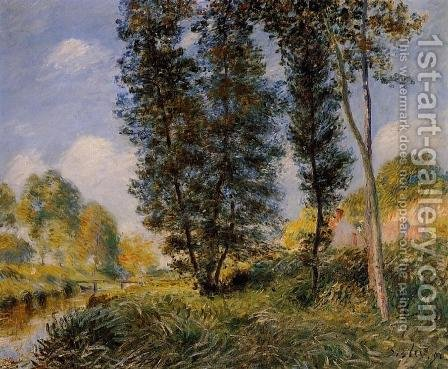 Banks of the Orvanne by Alfred Sisley - Reproduction Oil Painting