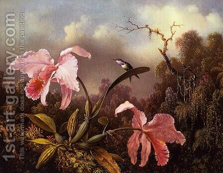 Orchids and Hummingbird 2 by Martin Johnson Heade - Reproduction Oil Painting