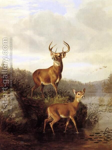 Buck and Doe by Arthur Fitzwilliam Tait - Reproduction Oil Painting