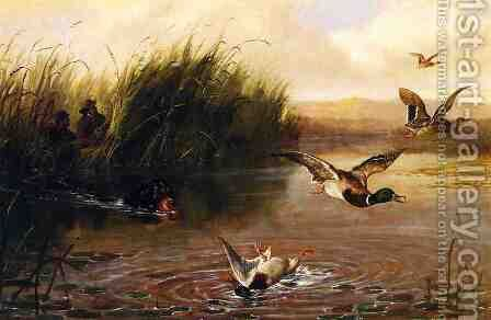 Duck Shooting by Arthur Fitzwilliam Tait - Reproduction Oil Painting