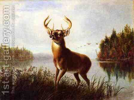 Eight Point Stag by Arthur Fitzwilliam Tait - Reproduction Oil Painting