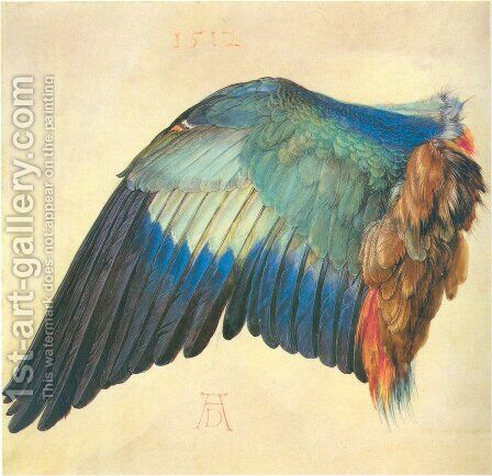 Wing of a Roller by Albrecht Durer - Reproduction Oil Painting