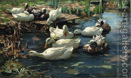 Ducks in a Quiet Pool by Alexander Max Koester - Reproduction Oil Painting