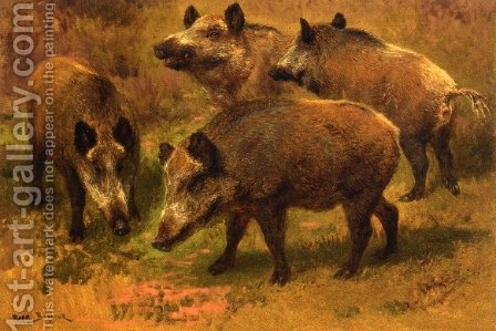 Four Boars in a Landscape by Rosa Bonheur - Reproduction Oil Painting