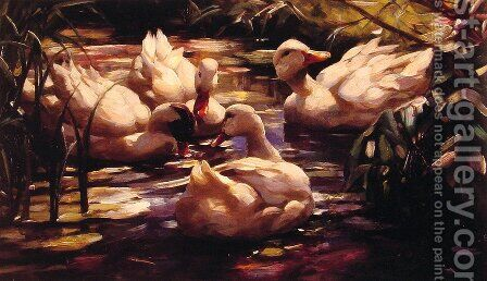 Ducks in a Forest Pond by Alexander Max Koester - Reproduction Oil Painting