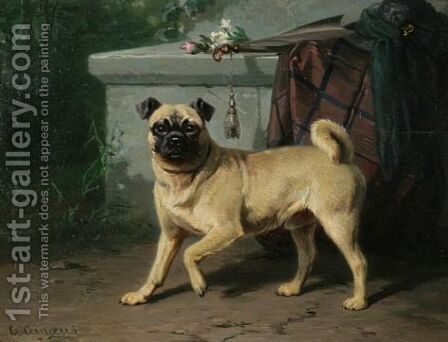 Pug by Conradyn Cunaeus - Reproduction Oil Painting