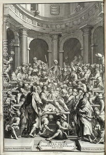 Public dissection in an anatomy theatre, 1725 by Jan Wandelaar - Reproduction Oil Painting