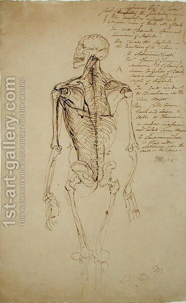 Drawing of a Mans Skeleton by James Ward - Reproduction Oil Painting