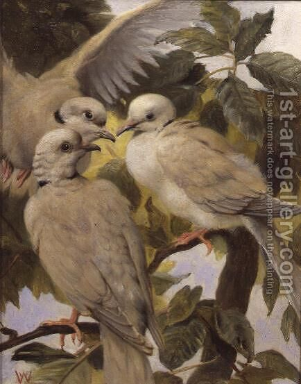Three Ringed Doves by Henry Weekes - Reproduction Oil Painting