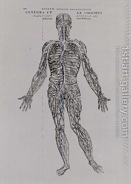 Veins and Arteries system by Andreas Vesalius - Reproduction Oil Painting